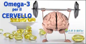 omega-3-cervello